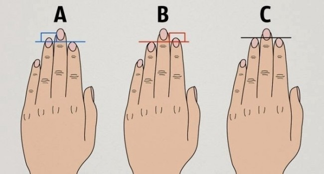 Do You Know What Finger Length Reveals About Your Personality ?